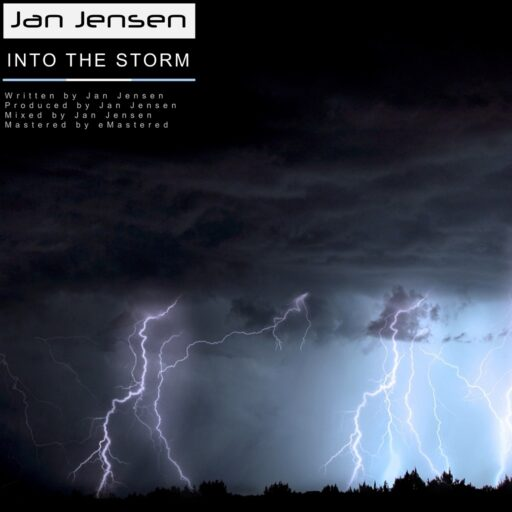 Into the Storm by Jan Jensen